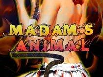 Madam's Animal