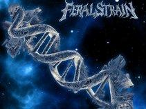 Feral Strain