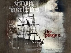 Image for IRON WALRUS