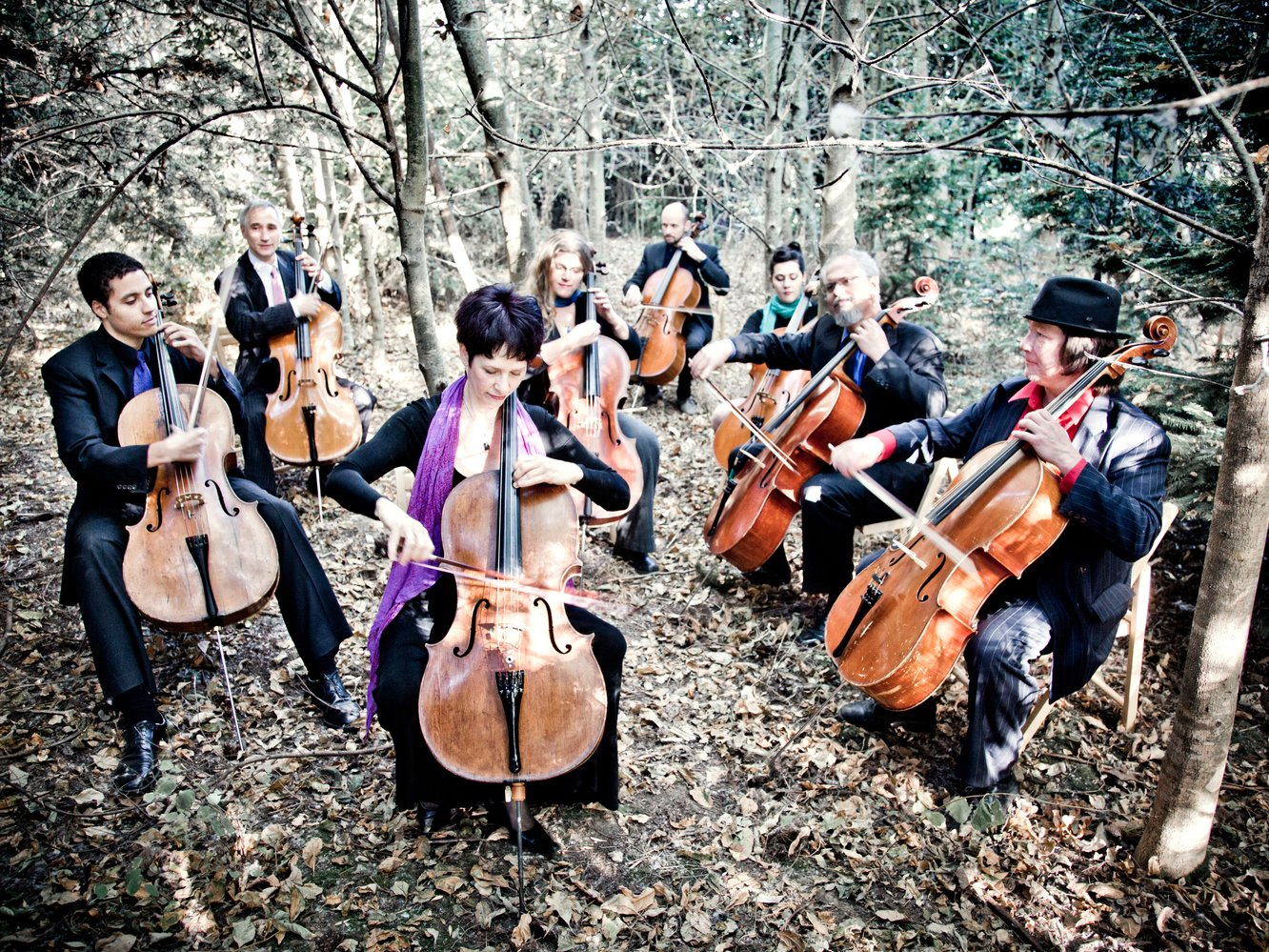 Image for Portland Cello Project
