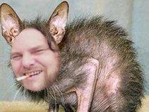 Swampcat