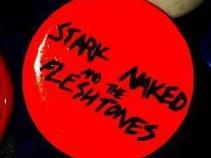 Stark Naked and The Fleshtones
