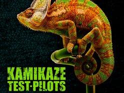 Image for Kamikaze Test Pilots