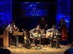 Image for acoustic blues companion