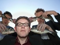 Too Noisy Fish