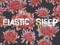 Image for Elastic Sleep