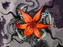 Octopus Lilium