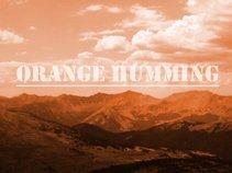 Orange Humming