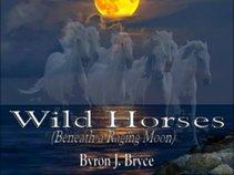 Byron J Bryce