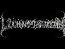 LITHOPEDION