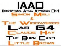 IAAD Orange