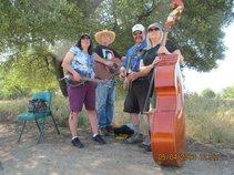 Blue Mountain Quartet