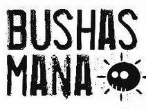 Bushas Mana