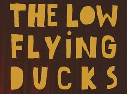 The Low Flying Ducks
