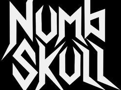 Image for Numbskull