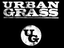 Urban Grass