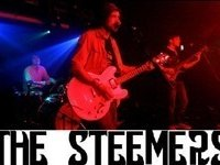 Image for The Steemers