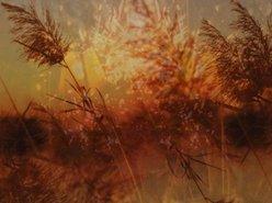 Image for Eyeshock Swelter