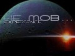 THE MOB  EXPERIENCE