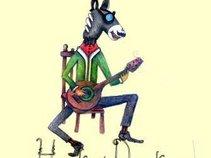 Honky Donkeys