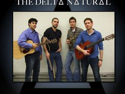 Image for The Delta Natural