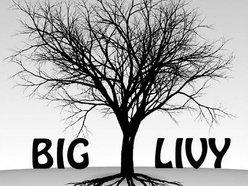 Image for Big Livy