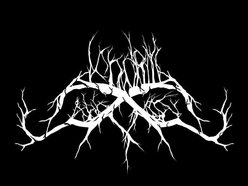 Image for Dendritic Arbor