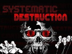 Image for Systematic Destruction