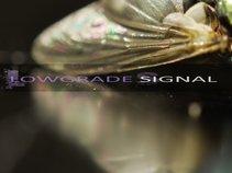 Lowgrade Signal