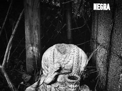 Image for NEGRA