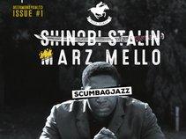 Shinobi Stalin