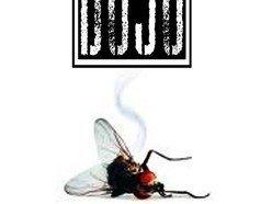 Image for DOJO