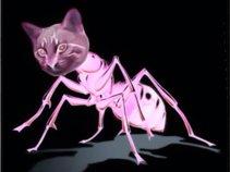 Kittybug