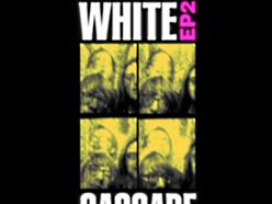 Image for The White Cascade