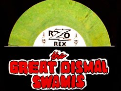 Image for The Great Dismal Swamis