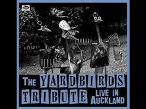 Yardbirds Tribute
