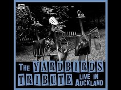 Image for Yardbirds Tribute