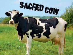 Image for Sacred Cow