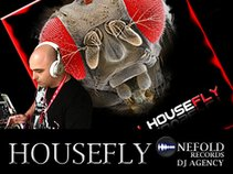 Official HouseFly