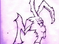 Image for The Rabbit M Project