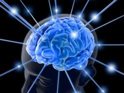 rad neon brains