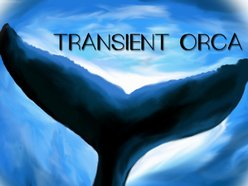 Image for Transient Orca