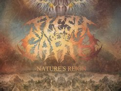 Image for Flesh of the Earth