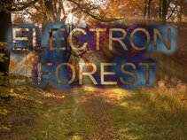 Electron Forest
