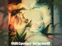 CSBR Experience