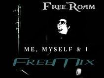 FreeRoam