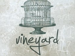 Image for Vineyard