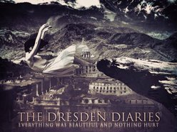 Image for The Dresden Diaries
