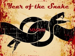 Image for Year of the Snake