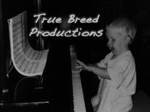 True Breed Productions